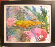 Living Creatures Series-Grass Hopper , 2009, water color paints and pencils on high Gsm Paper, By Aaron O'Brien. For Sale