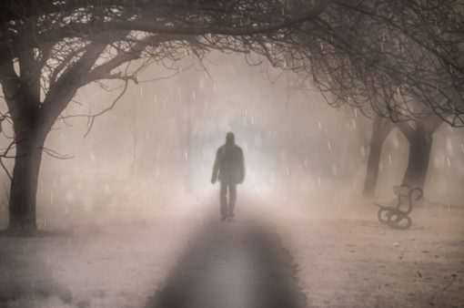 Photograph of man  in a fog, walking  along a path, with overhanging trees, and a park bench on one side.Short fiction stories about the Holocaust.