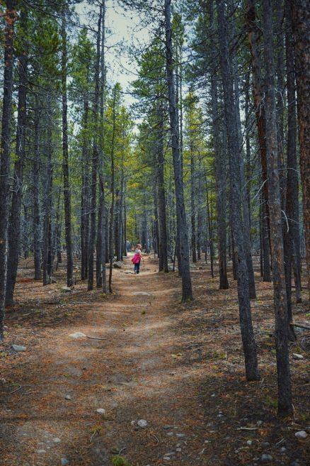 Ella On Storm Pass Trail