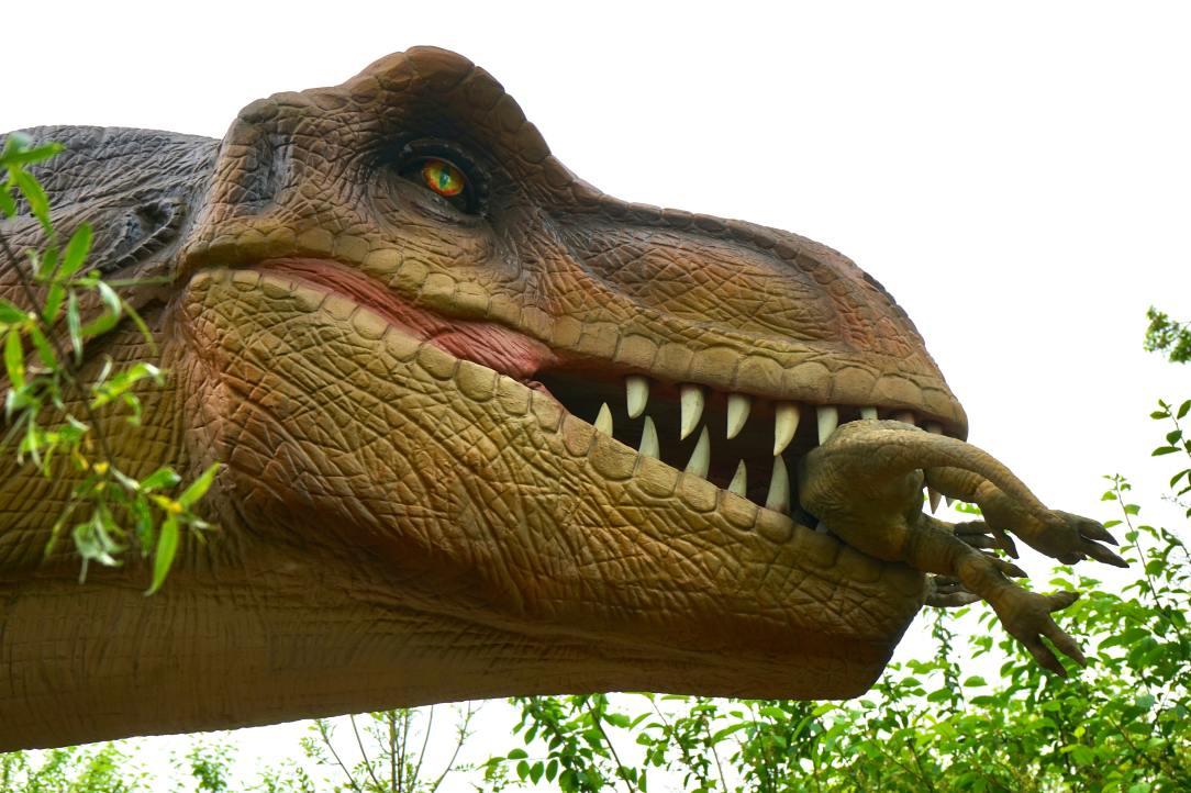 Purple T-rex