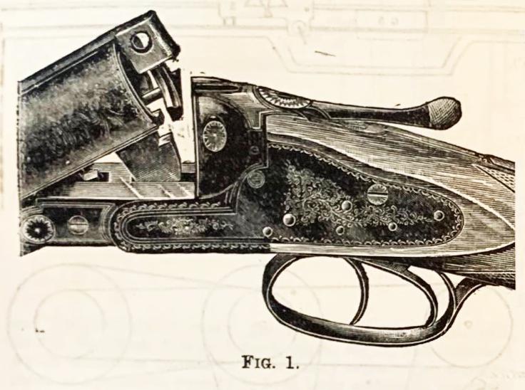 A Top-lever Hammerless-gun