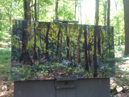 forest-camoflauge