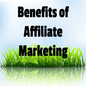 Become An Affiliate Marketer?