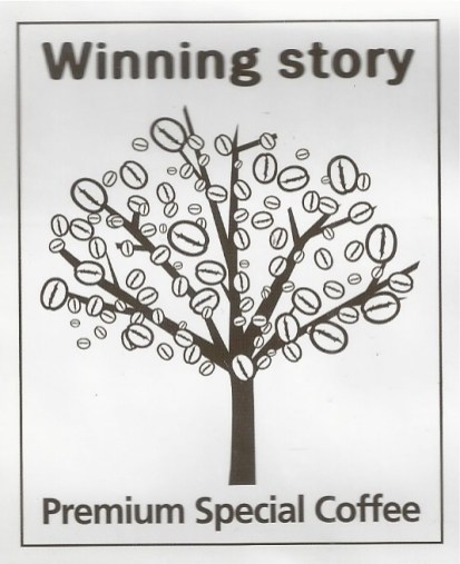 winning-story-original-logo