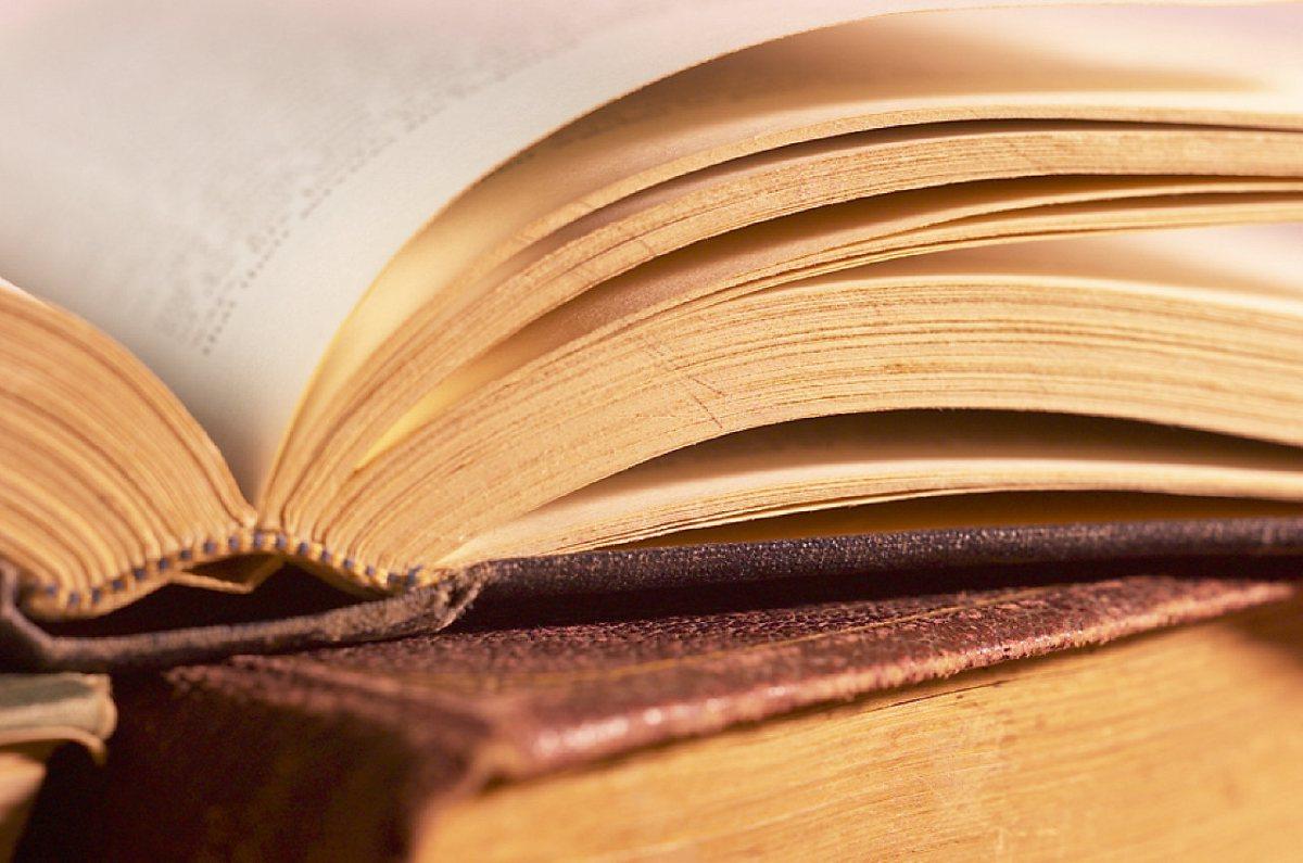 Holdninger, viden og faglighed i læreruddannelsen