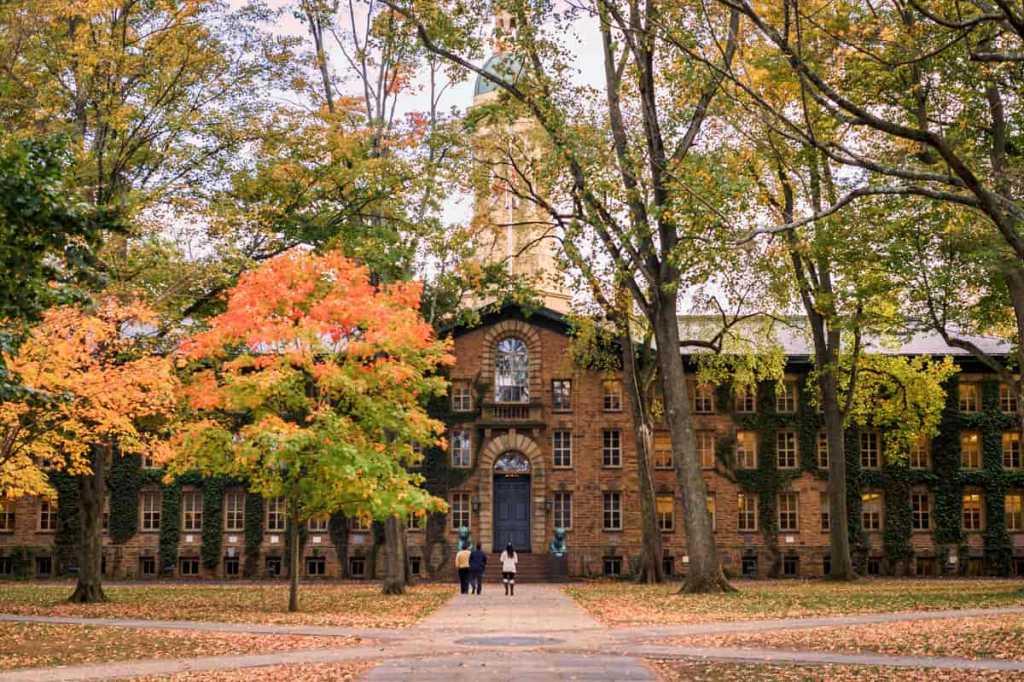 Universitetspolitik: Pseudoforskning