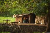 Morning walk at Mandu