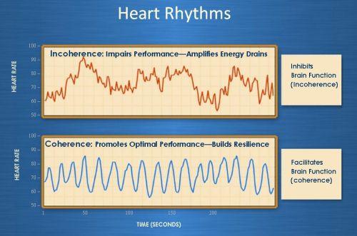 hartcoherentie hartslag ademhaling