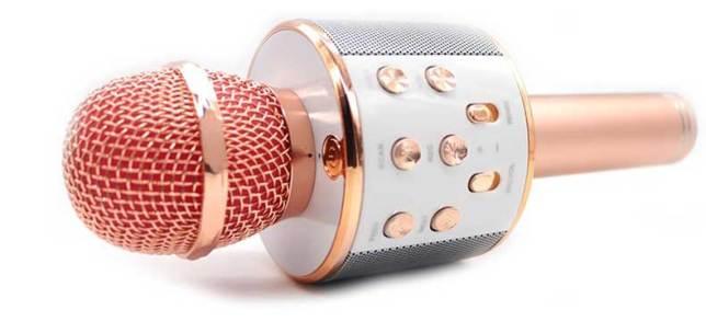 este karaoke microfoon goedkoop