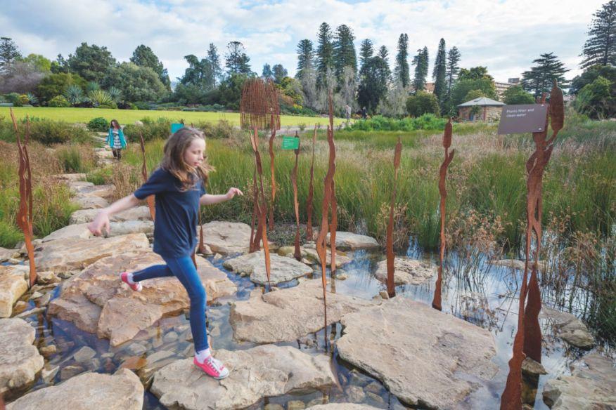 Adelaide Botanical Gardens Wetland