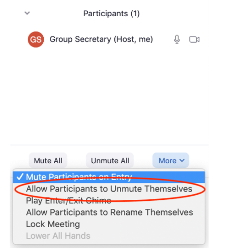Allow participants to unmute themselves