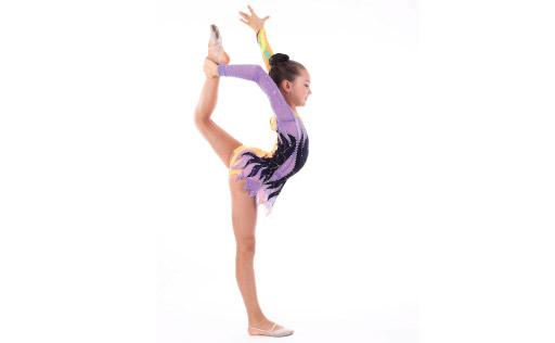 AAU Gymnastics