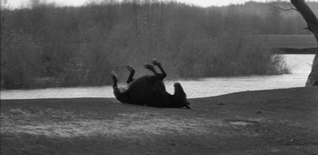 Film still from Andrei Tarkovsky's Andrei Rublev (1966). 1999 Criterion re-release.