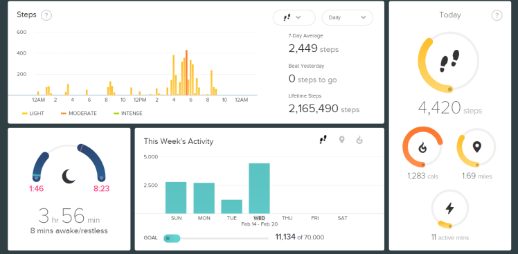 FitBit Stats-2021-02-17 II