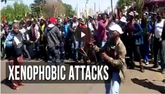 Xenophobia: South African Youths begins fresh protest, demands Foreigners to leave