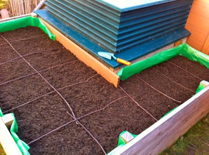 After 3 hours, the highbed is ready for planting. Twigs provide the SFG-style spacing that I need to prevent overcrowding.