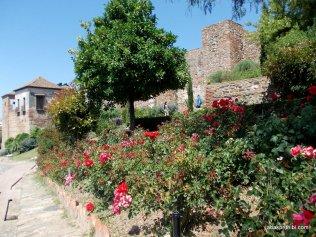 Alcazaba of Malaga, Spain (31)