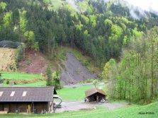 Way to Mt Rigi, Switzerland (3)