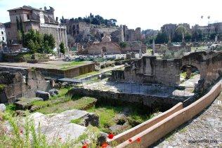 The Roman Forum, Rome, Italy (6)