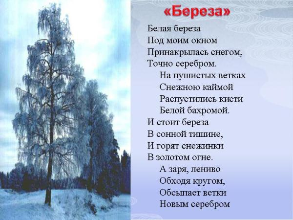 Короткие стихи есенина о природе, которые легко учатся для ...