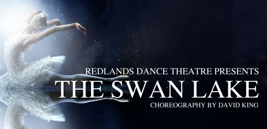 swan lake project 2