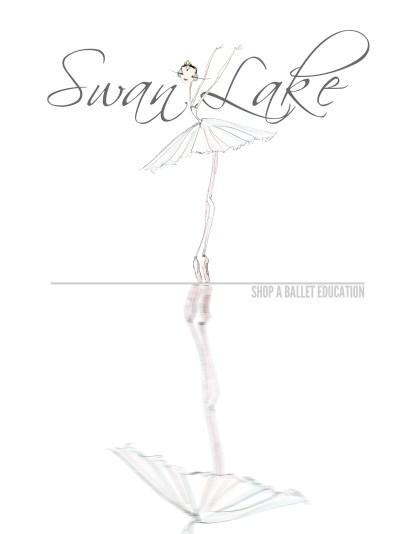 swan lake shop