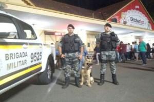 Quatro animais estão sendo adestrados para reforçar o trabalho da Brigada em Santa Cruz do Sul