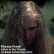"""""""Cabin In The Woods (A Band Called Paul Mix)"""" by Rhesus Freak"""