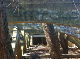 Abandoned Mill94.jpg PS