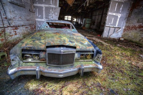 Seen in an abandoned dairy, Wallkill NY. Photo by Andy Milford