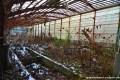 Showa-Shinzan Tropical Plant Garden