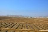 Barren Countryside