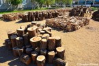 Fire Wood At North Korean School Yard
