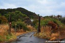 Abandoned Botanical Garden