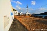 Dolphinarium Next To The Seto Inland Sea