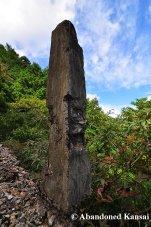 Decayed Concrete Pillar