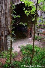 Abandoned Backstop