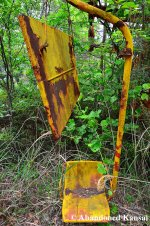 Partly Overgrown Lift Seat