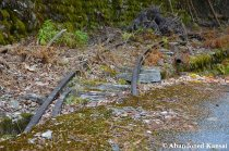 Old Mining Railway In Japan