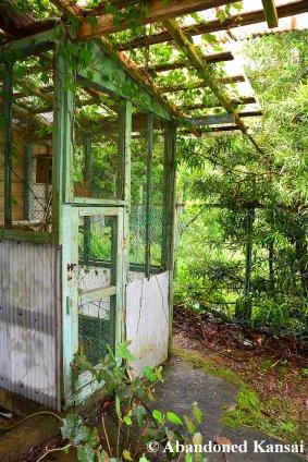 School Bird Cage