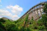 Overgrown Nara Dreamland