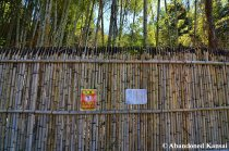 New Bamboo Fence