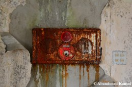 Decaying Fire Alarm