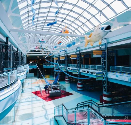Cincinnati Mall / Cincinnati Mills / Forest Fair Mall