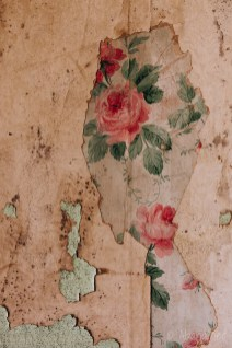 Ohio State Reformatory Wallpaper Detail