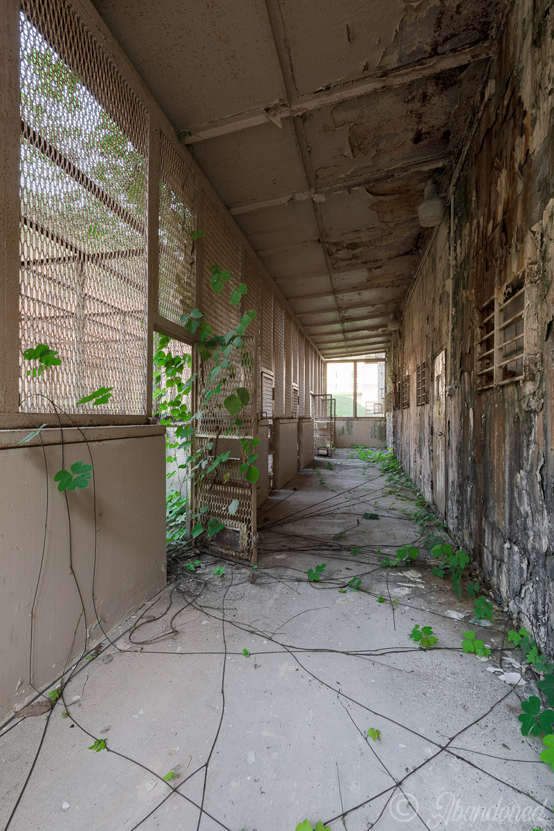 Outdoor Recreation at Brushy Mountain State Penitentiary