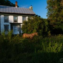 Brumaghim Family Farm House