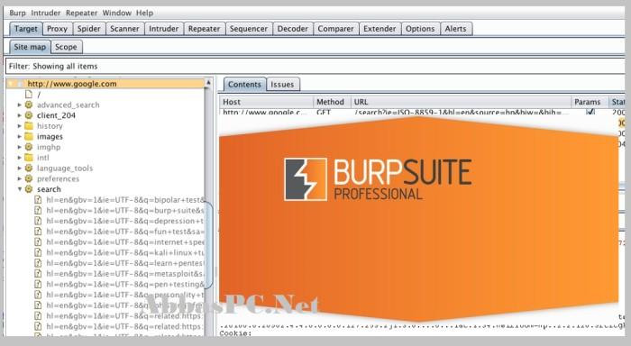 Burp Suite Professional Full Version Cracked