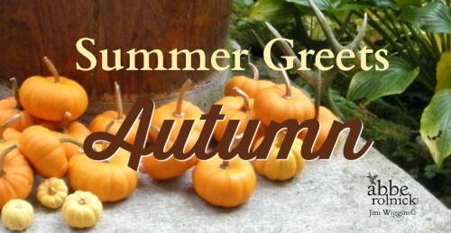 Abbe's Notes: Summer Greet's Autumn by Abbe Rolnick