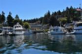 Roche Harbor Marina 2